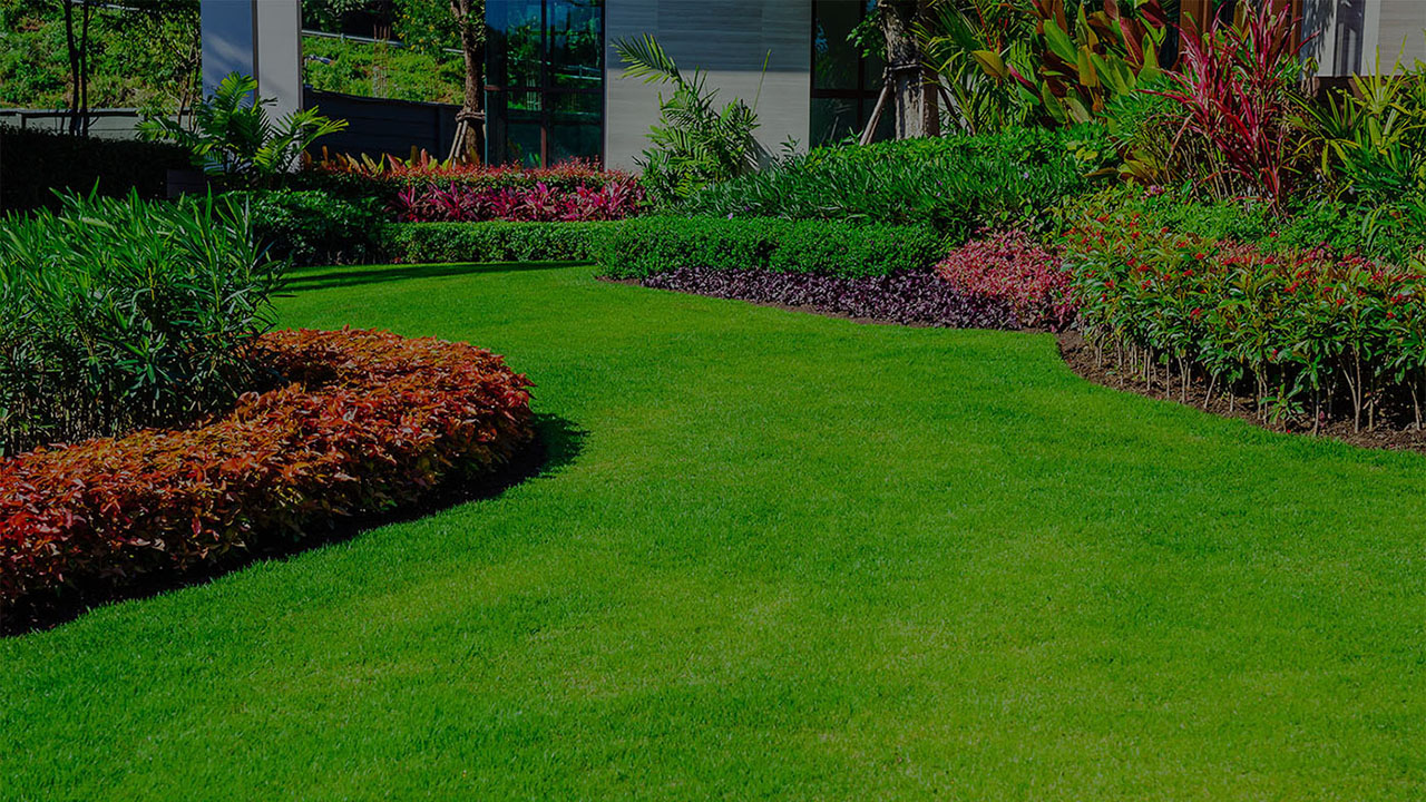 Lake in the Hills Drainage Services, Landscaping Experts